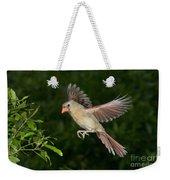 Northern Cardinal Hen Weekender Tote Bag
