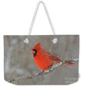 Northern Cardinal Weekender Tote Bag