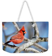 Northern Cardinal Scarlet Blaze Weekender Tote Bag