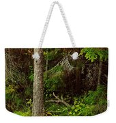 Northern Forest 1 Weekender Tote Bag