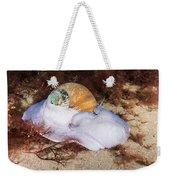Northern Moon Snail Weekender Tote Bag
