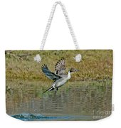 Northern Pintail Drake Taking Weekender Tote Bag