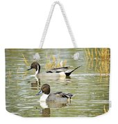 Northern Pintail Ducks  Weekender Tote Bag