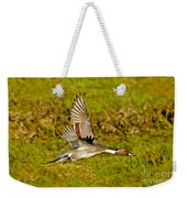 Northern Pintail In Flight Weekender Tote Bag