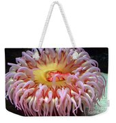 Northern Red Anemone Weekender Tote Bag
