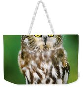 Northern Saw-whet Owl Aegolius Acadicus Wildlife Rescue Weekender Tote Bag