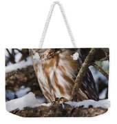 Northern Saw-whet Owl.. Weekender Tote Bag