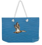 Northern Shoveler In Flight Weekender Tote Bag