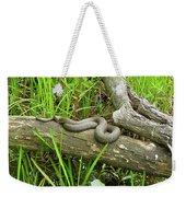 Northern Water Snake - Nerodia Sipedon Weekender Tote Bag