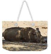 Northern White Rhinoceros - Ceratotherium Simum Cottoni Weekender Tote Bag