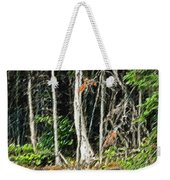Northern Woods Weekender Tote Bag