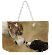 Nose To Nose Dogs Weekender Tote Bag by Linsey Williams