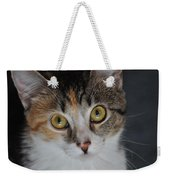 Nosey Lil Kitty Weekender Tote Bag