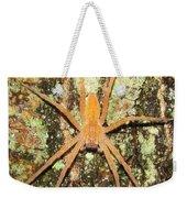 Nursery Web Spider Weekender Tote Bag