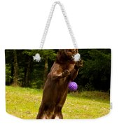 Nute And The Ball Weekender Tote Bag