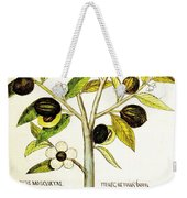 Nutmeg Plant Botanical Weekender Tote Bag