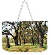 Oak Allee At Roseland Plantation  Weekender Tote Bag