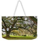 Oak Alley Reverie Weekender Tote Bag