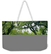 Oak Alley Trees Weekender Tote Bag