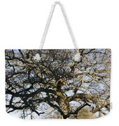 Oak Tree In Winter Weekender Tote Bag