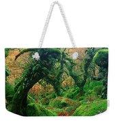 Oak Trees In A Forest, Wistmans Wood Weekender Tote Bag