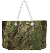 Oaks Of Georgia Weekender Tote Bag