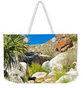 Oasis On Borrego Palm Canyon Trail In Anza-borrego Desert Sp-ca Weekender Tote Bag