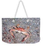 Ocellate Swimming Crab Weekender Tote Bag