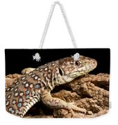 Ocellated Lizard Timon Lepidus Weekender Tote Bag