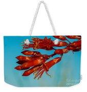 Ocotillo Flowers Weekender Tote Bag by Robert Bales