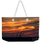 Ocotillo Sunset Weekender Tote Bag by Robert Bales