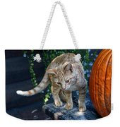 October Kitten #2 Weekender Tote Bag