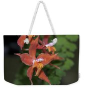 Odontioda Red Riding Hood Macro  8710 Weekender Tote Bag
