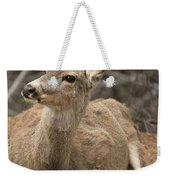 Oh Deer Weekender Tote Bag