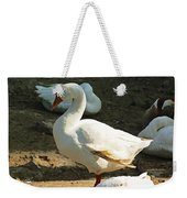 Oil Painting - A Duck Making A Pose Weekender Tote Bag