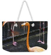 Oil Painting - Focus On A Single Flamingo Inside The Jurong Bird Park Weekender Tote Bag
