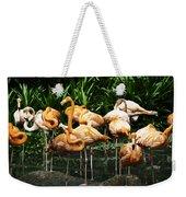 Oil Painting - Number Of Flamingos Inside The Jurong Bird Park Weekender Tote Bag