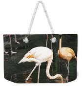 Oil Painting - The Head Of A Flamingo Under Water In The Jurong Bird Park In Singapore Weekender Tote Bag