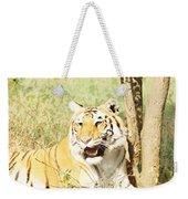 Oil Painting - An Alert Tiger Weekender Tote Bag