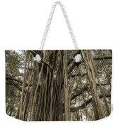 Old Banyan Tree Weekender Tote Bag