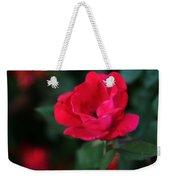 Old Fashioned Rose Weekender Tote Bag