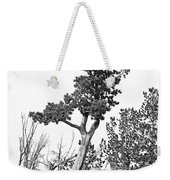 Old Gnarly Tree Weekender Tote Bag