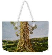 Old Tree In Spring Light Weekender Tote Bag