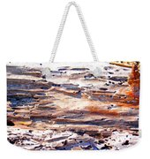 Old Weathered Log On The Sea Shore Weekender Tote Bag