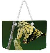 Oldworld Swallowtail Emerging Weekender Tote Bag