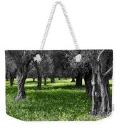 Olive Grove Italy Cbw Weekender Tote Bag