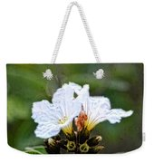 Olive You - Olive Flower Art By Sharon Cummings Weekender Tote Bag