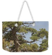 On A Mountain Top Weekender Tote Bag