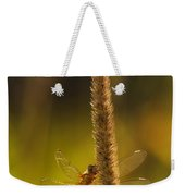 On A Summer Morning Weekender Tote Bag