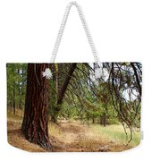 On A Trail From The Past To The Future Weekender Tote Bag